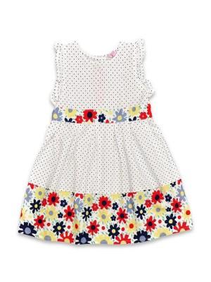 rochite fetite 2-3-4-5 ani buline si flori